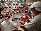 Frigorífico de MS e mais 4 têm exportação de carne suspensa para os EUA