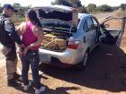 Mulher é presa com 500 kg de maconha em veículo roubado