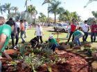 Praça Ramez Tebet recebe plantio de árvores