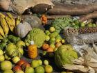 Prazo para agricultor familiar concorrer a edital da Conab vai até dia 23