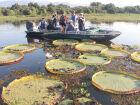 Mato Grosso do Sul oferece opções de lazer para todos os gostos