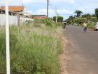 Prefeitura põe na mira donos de terrenos baldios e calçadas sujas