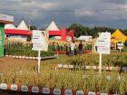 Tecnoagro se consolida como um dos mais importantes eventos do agro no país