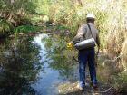 Três Lagoas tem seis casos suspeitos de dengue, diz Secretaria de Saúde
