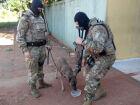 Balanço da Operação Katagogis tem prisão até por 'gato' de água