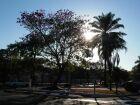 Inverno tem início com alerta para baixa umidade em Paranaíba