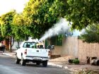 Três Lagoas lidera ranking de incidência de dengue em MS e bairros recebem fumacê