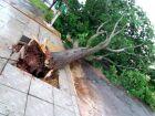 Defesa Civil alerta para chuva forte e ventos de até 100 Km/h