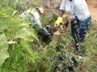 Em Três Lagoas, 47 moradores são notificados com suspeita de chikungunya