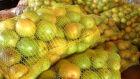Indústria da laranja faz prospecçãono Estado