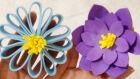 Curso de confecção de flores gratuito abre inscrições para aparecidenses