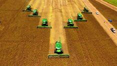 Mato Grosso do Sul colhe 8,5 milhões de toneladas de soja