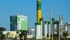 J&F busca banco para vender fábrica de celulose