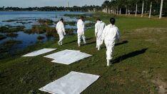 Equipes não encontram carrapatos na Lagoa Maior