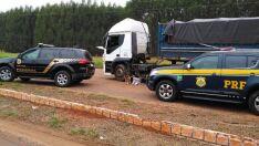 Cão farejador encontra 17 kg de cocaína em caminhão e motorista é preso