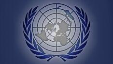 Conselho de Segurança da ONU tem cinco novos membros