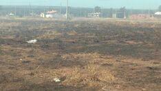 Em Três Lagoas, 19 terrenos são notificados por queimadas