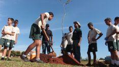 Semana do Meio Ambiente termina neste sábado com ação ecológica
