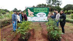 Projeto incentiva sustentabilidade e doa mudas para escolas da cidade
