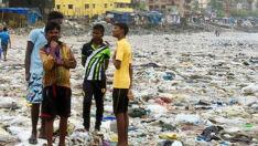 Microplásticos ameaçam 529 espécies da fauna marinha em todo o mundo