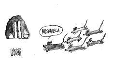 Charge do dia - Mussarela