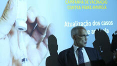 Registros de mortes por febre amarela aumentam em cinco vezes
