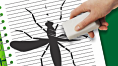 Combate ao Aedes registra o menor índice de notificações de dengue