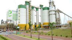 Projeto de expansão da Eldorado Brasil pode ser retomado por multinacional