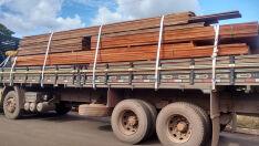 Empresa goiana é multada em R$ 6 mil por carga de madeira ilegal