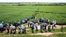 Expectativa é de triplicar plantio da soja  na safra 2018/2019