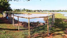 Por mais beleza, Lagoa Maior ganha jardim aquático