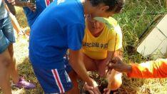 Alunos de escola de Três Lagoas participam de projeto de arborização