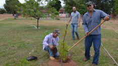 Praça do Jardim das Acácias recebe mais 25 mudas de árvores