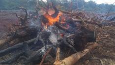 Fazendeiro é multado em R$ 5 mil por incêndio