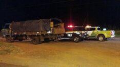 Motorista é preso por tráfico e flagrado transportando mercadoria sem nota fiscal