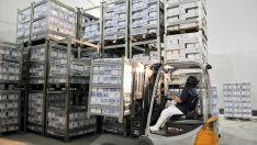 Exportação de industrializados registra alta de 21% em MS