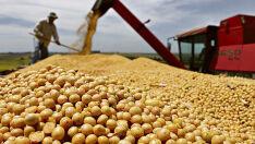 Aprovado relatório que regula compensação de perdas com desoneração das exportações de grãos