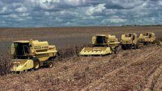 Aprosoja MS divulga  relatório de colheita