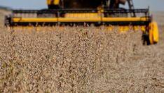 Falta de orçamento atrasa renegociação de dívidas rurais