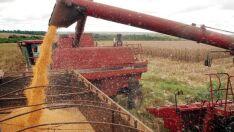 Safra retorna a nível histórico, com produção de 232 milhões de toneladas