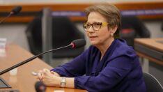 Marco regulatório para defensivos agrícolas quer modernizar legislação vigente no país