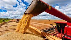 Conab divulga nesta terça-feira, 12, nono levantamento da safra de grãos 2017/2018