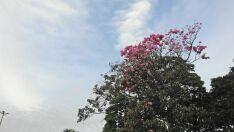 Massa de ar seco impede que frente fria chegue em Paranaíba