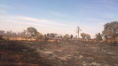 Nova queimada em pastagem mobiliza bombeiros perto de aeroporto