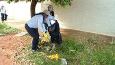 Três Lagoas registra 534 casos de dengue é a 2ª na lista de alta incidência