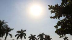 Calor volta e termômetros devem atingir os 36ºC em Três Lagoas