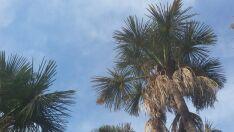 Previsão indica sol em Paranaíba e frente fria em MS
