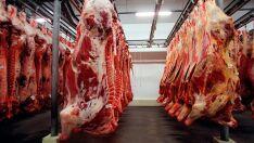 Exportação de carne in natura do Brasil cresce 17,6% em agosto e atinge recorde