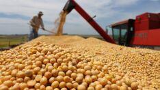 Aprosoja abre oficialmente plantio da soja 2018/19 em Terenos