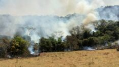 Incêndio em pastagem é controlado com ajuda de avião